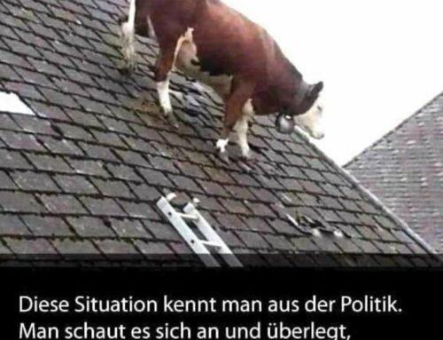 Denkanstoss eines österreichischen Polizisten über Sorgen und Nöte von Polizisten im Dienst sowie privat!