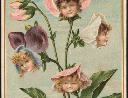 Pflanze gegen Corona- Wirksamkeitsnachweis durch das Frauenhofer Institut Leipzig