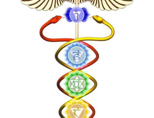 Birds of Paradise- Reinigung unserer DNA